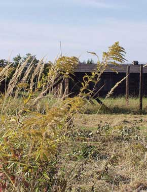 Niemiecki obóz zagłady Majdanek w Lublinie